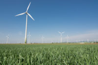 Wind turbine field & green wheat - free  images to use -