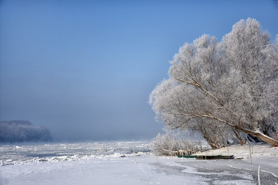 Photo of frozen Danube river on a cold winter day