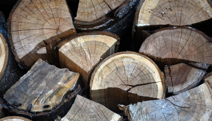Picture of old cherry logs