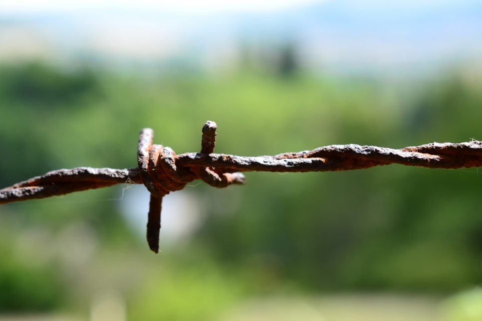 rusted barbwire with blurred background